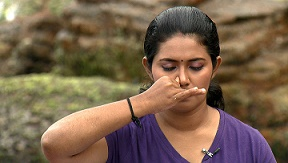 wellness-yoga-bhastrika-pranayama
